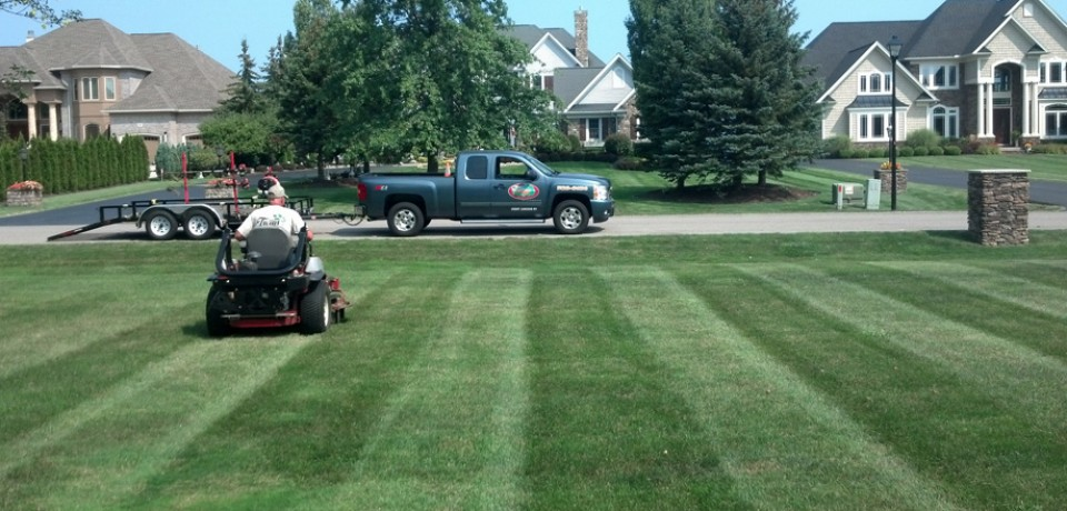 Greece s premier lawn care professional twigs lawn care for Local lawn mowing services