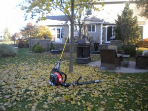 Time to clean up those leaves