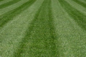 Lawn Mowing Stripes