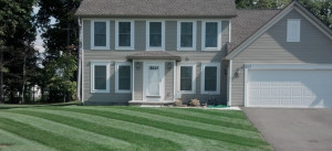 Lawn Care Rochester Ny Twigs Lawn Care Greece Ny
