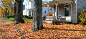 Fall Cleanup time